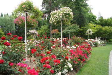 湧永記念萬之庭園